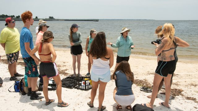 Florida college students get to tour the state to study water quality